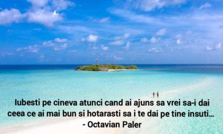 Cele mai frumoase citate ale lui Ocravian Paler