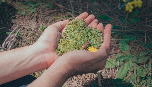 Samanta – Lectie de morala, cinste si onestitate