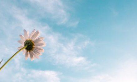 Daca o persoana nu renunta, este mai puternica decat soarta sa…